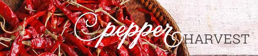 pepper-harvest