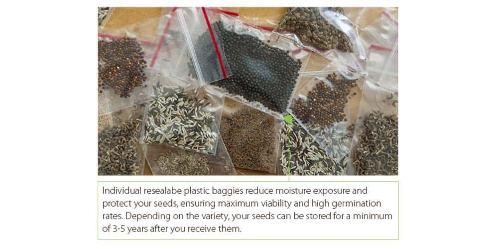 tour-seed-plastic-baggies