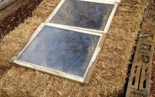 Straw bale cold frames are easy, inexpensive, portable, and biodegradable.