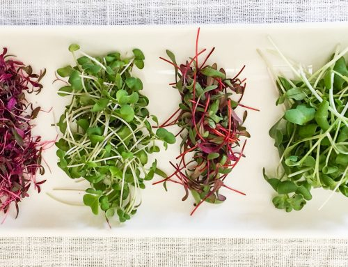 How to grow microgreens (and use up your extra seeds)