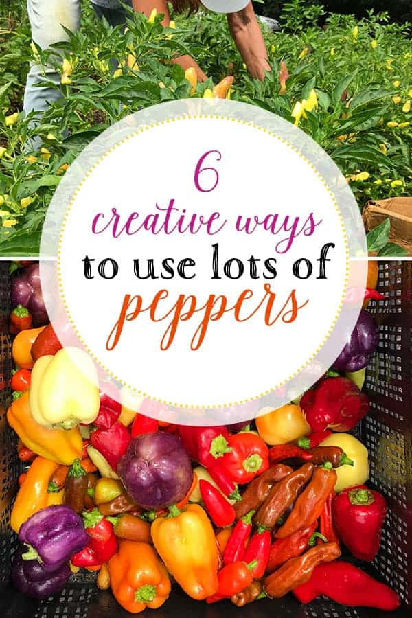6 creative ways to use lots of peppers - Pinterest image