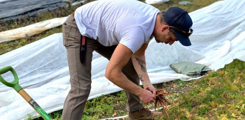 Chris Miller, Horseshoe Farm in Travelers Rest, SC.- small farm, regenerative farm